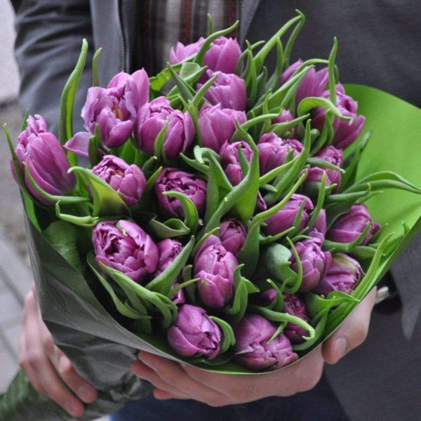 Bukiet z fioletowych tulipanów
