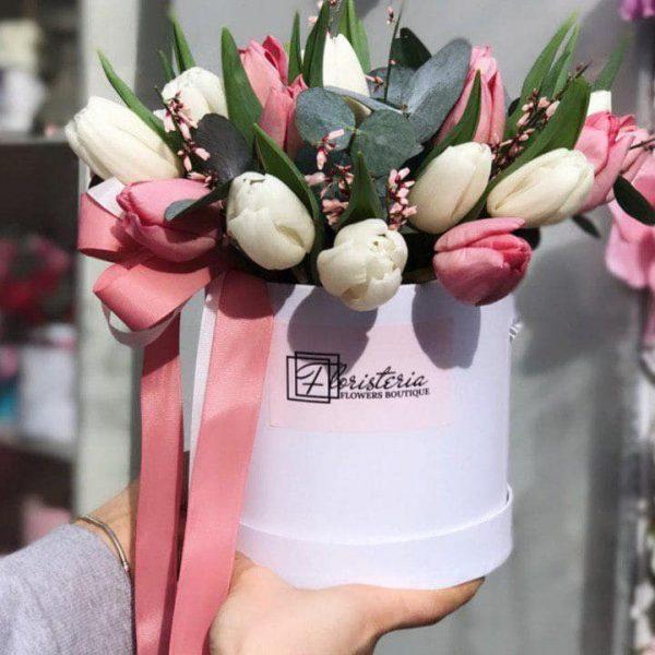 Box z 21 tulipana