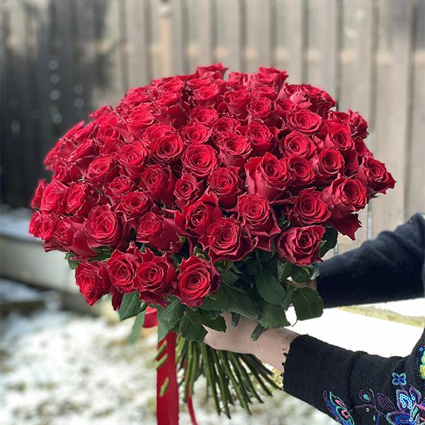 77 róż